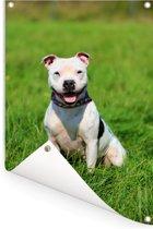 Glimlachende Staffordshire Bull Terrier Tuinposter 80x120 cm - Tuindoek / Buitencanvas / Schilderijen voor buiten (tuin decoratie)