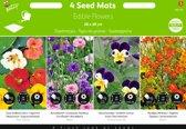Buzzy® Zaadmatjes Eetbare Bloemen - 4 matjes