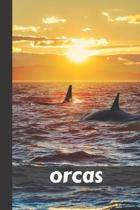 orcas: small lined Orca Notebook / Travel Journal to write in (6'' x 9'') 120 pages