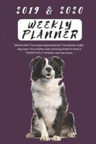 2019 & 2020 Weekly Planner What's That? You've Got Appointments? This Border Collie Dog Says