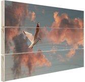 Meeuw bij zonsondergang Hout 80x60 cm - Foto print op Hout (Wanddecoratie)