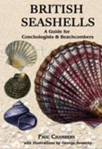 British Seashells