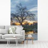 Fotobehang vinyl - Moeras en bomen in het Nationaal park Chobe breedte 190 cm x hoogte 280 cm - Foto print op behang (in 7 formaten beschikbaar)