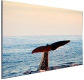 Walvisstaart uit het water Aluminium 90x60 cm - Foto print op Aluminium (metaal wanddecoratie)