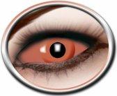Party Lenzen - Sclera Orange Eye - Geschikt voor 6 maanden gebruik