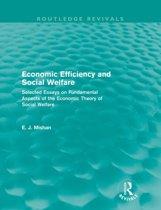 Economic Efficiency and Social Welfare