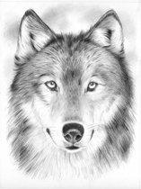 Schetsen op nummer - wolf portrait