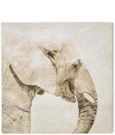 Art for the Home - Canvas Schilderij - Olifant - Beige - 50x50 cm