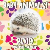 Baby Animals! 2019 Mini Wall Calendar (UK Edition)