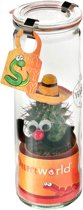 Desertworld Glas - Mexicaan Cactus met Sombrero