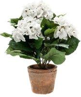 Kunstplant Hortensia wit in terracotta pot 37 cm - Kamerplant witte Hortensia