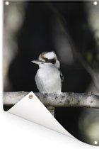 Een kookaburra past met haar vacht precies bij de tak waarop hij zit Tuinposter 60x90 cm - Tuindoek / Buitencanvas / Schilderijen voor buiten (tuin decoratie)