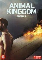 Animal Kingdom - Seizoen 2