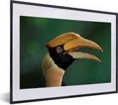 Foto in lijst - Dubbelhoornige neushoornvogel met een groene achtergrond fotolijst zwart met witte passe-partout klein 40x30 cm - Poster in lijst (Wanddecoratie woonkamer / slaapkamer)