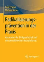 Radikalisierungspr vention in Der Praxis