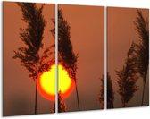 Canvas schilderij Zonsondergang | Geel, Bruin, Oranje | 120x80cm 3Luik