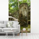 Fotobehang vinyl - Foto van de Maya ruïne in Calakmul breedte 180 cm x hoogte 270 cm - Foto print op behang (in 7 formaten beschikbaar)