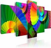 Schilderij - Verdraaide Kleuren ,  multi kleur , 5 luik