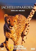 Jachtluipaarden - Dodelijke Snelheid