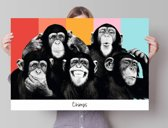 Reinders Poster The Chimp - compilation - Poster - 91,5 × 61 cm - no. 22300