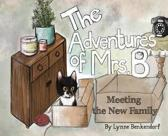 The Adventures of Mrs. B