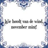 Tegeltje met Spreuk (Tegeltjeswijsheid): Wie houdt van de wind, november mint! + Kado verpakking & Plakhanger