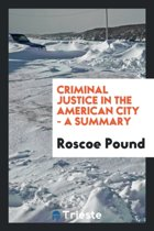 Criminal Justice in the American City - A Summary