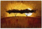 Schilderij - Afrika, Eenzame bomen, bruin/geel, 1 deel
