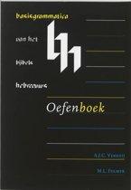 Basisgrammatica van het Bijbels Hebreeuws Oefenboek