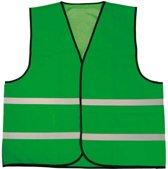 Veiligheidshesje standaard groen