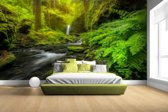 Prachtig plaatje jungle Fotobehang 380x265