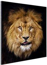 Leeuw portret fotoafdruk Aluminium 80x120 cm - Foto print op Aluminium (metaal wanddecoratie)