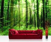 """Fotobehang """"Zonlicht door de bomen"""" vliesbehang 300x210cm"""