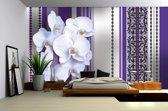 Fotobehang Vlies | Bloemen, Orchidee | Paars, Grijs | 368x254cm (bxh)