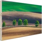 Velden Oost-Europa Hout 80x60 cm - Foto print op Hout (Wanddecoratie)