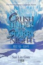 Crush Under the Starry Night