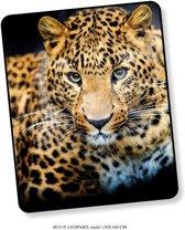 Elegante Plaid Leopard 130x160 - Prachtige Design - Heerlijk Zacht