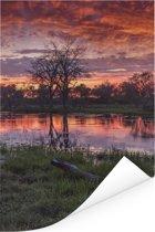 Moeras en bomen in de schemering in het Nationaal park Chobe Poster 60x90 cm - Foto print op Poster (wanddecoratie woonkamer / slaapkamer)