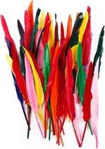 Veren, l: 29-31 cm, kleuren assorti, gans, 100 assorti