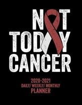 Not Today Head and Neck Cancer: 2020 -2021 Daily/ Weekly/ Monthly Planner: 2-Year Personal Planner with Grid Calendar Burgundy and Ivory Awareness Rib