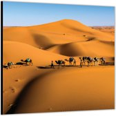 Dibond –Woestijn– 50x50cm Foto op Dibond;Aluminium (Wanddecoratie van metaal)