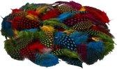 100x Gekleurde parelhoen veren - Vogel decoratie veertjes - hobby veren