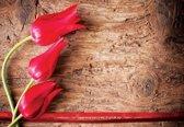 Fotobehang Flowers Forest Nature | M - 104cm x 70.5cm | 130g/m2 Vlies