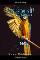 What Letter Is It? Beginning Sounds 2