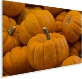 Afbeelding met enorme oranje pompoenen Plexiglas 60x40 cm - Foto print op Glas (Plexiglas wanddecoratie)