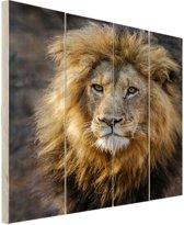 Leeuwenkoning Hout 40x60 cm - Foto print op Hout (Wanddecoratie)