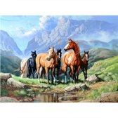 Diamond painting - paarden - 45 x 60 cm