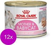 Royal Canin Babycat Instinctive - Kattenvoer - 12 x 195 g