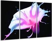 Glasschilderij Bloem | Paars, Blauw, Zwart | 120x80cm 3Luik | Foto print op Glas |  F003522