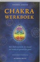 Chakra Werkboek